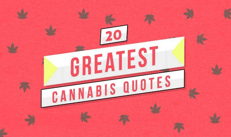 20 Greatest Cannabis Quotes - Weed Reader