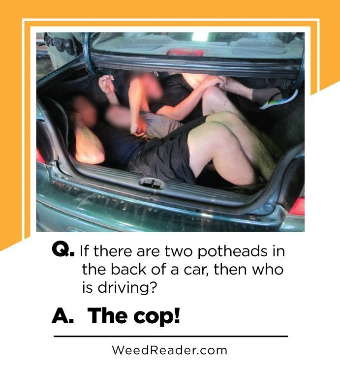 Potheads and cop