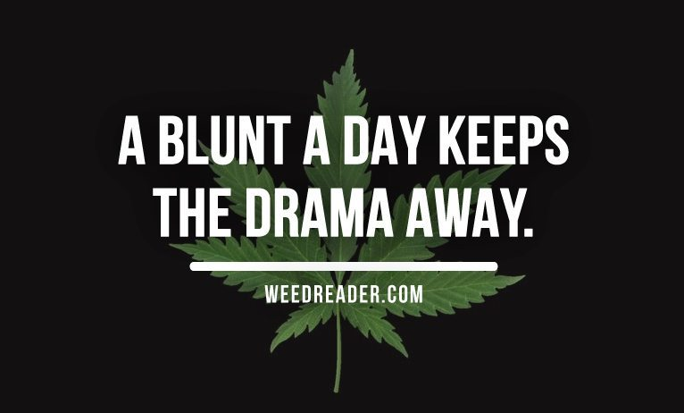 A blunt a day keeps the drama away