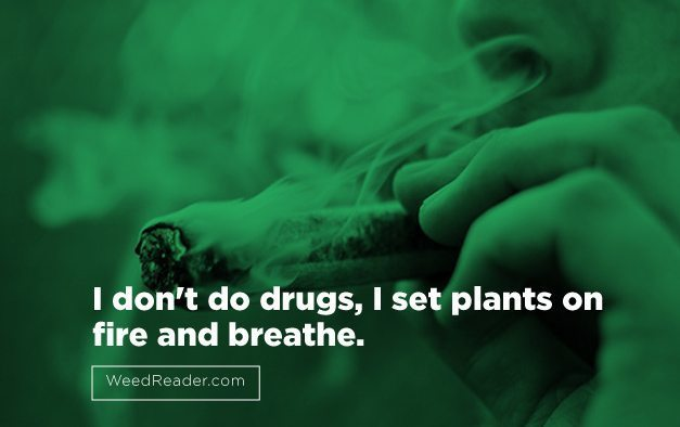 I don't do drugs, I set plants on fire and breathe