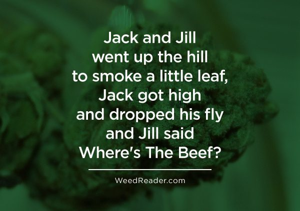 Jack and Jill went up the hill to smoke a little leaf Jack got high and dropped his fly and Jill said Wheres The Beef