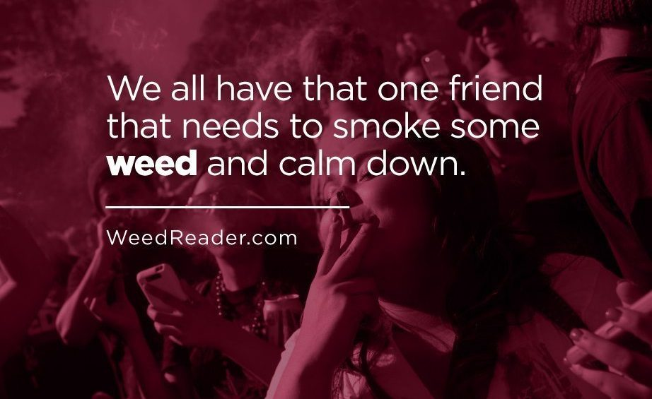 We all have that one friend that needs to smoke some weed and calm down