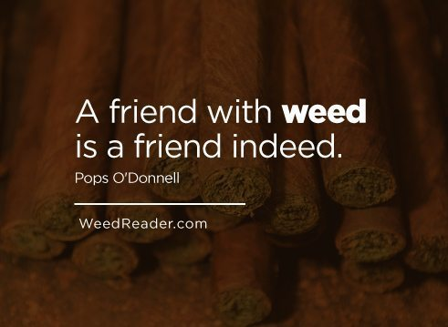 a-friend-with-weed-is-a-friend-indeed