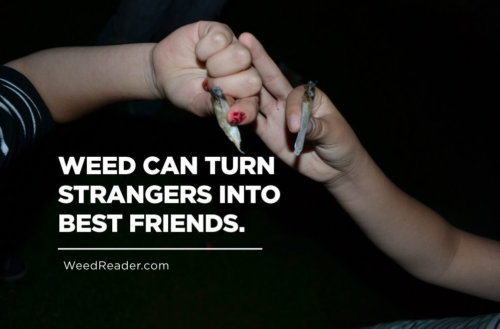 Weed Can Turn Strangers Into Best Friends