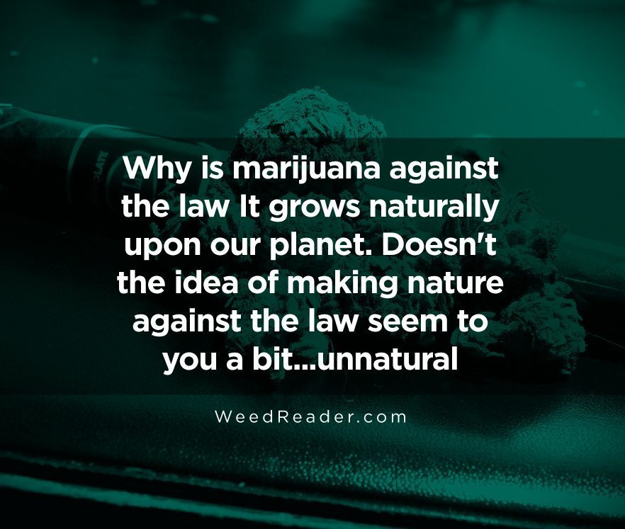 why-is-marijuana