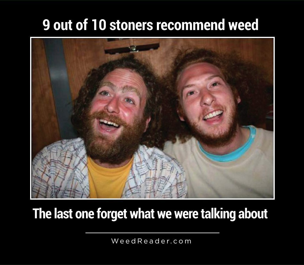 9 out of 10 stoners recommend weed the last one forget what we were talking about