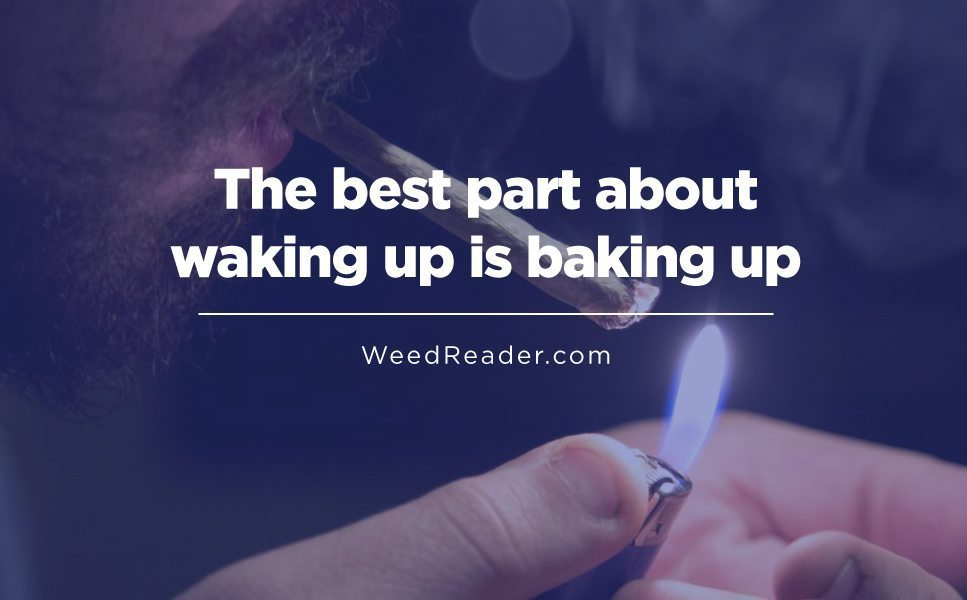 The best part about waking up is baking up