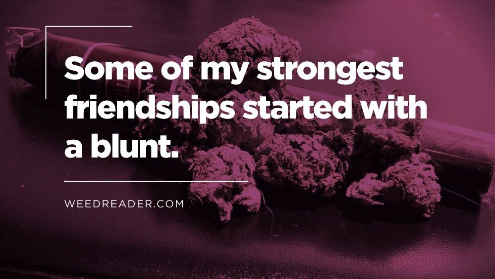 some of my strongest friendships started with a blunt