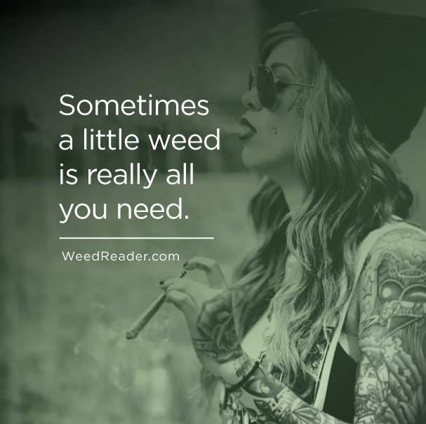 Sometimes a little weed is really all you need