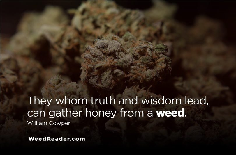 They whom truth and wisdom lead, can gather honey from a weed