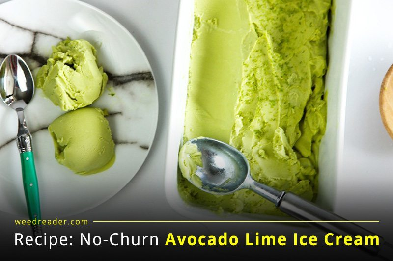 weedreader Recipe No Churn Avocado Lime Ice Cream