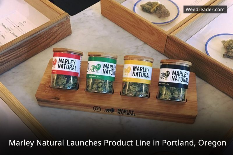 Marley Natural Launches Product Line In Portland Oregon