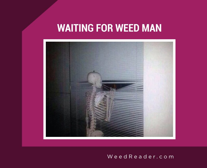 Waiting For Weed Man