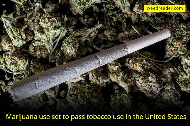 Marijuana use set to pass tobacco use in the United States