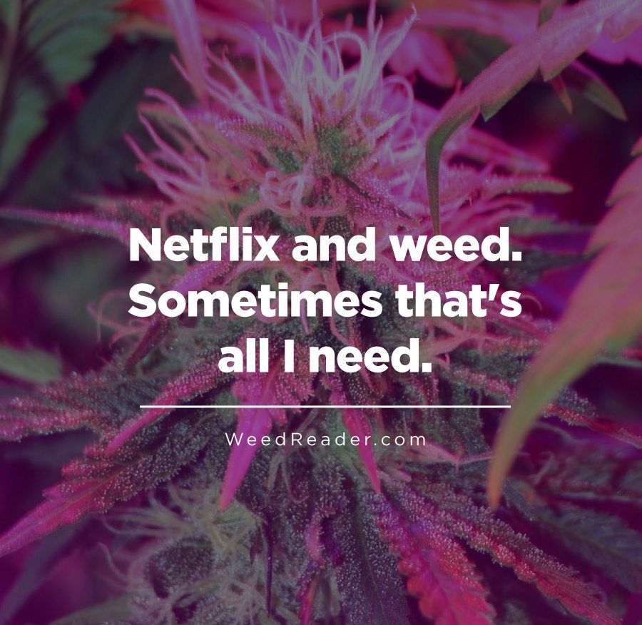 netflix-and-weed-sometimes-thats-all-i-need