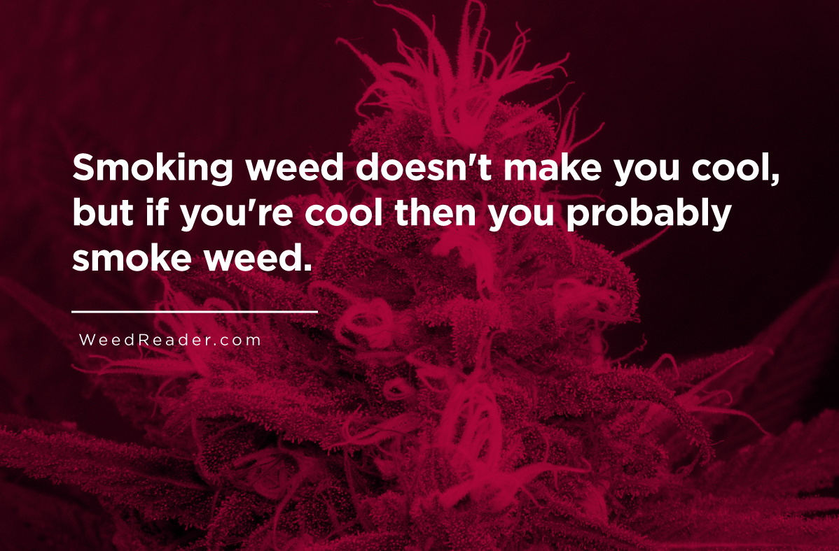 smoking-weed-doesnt-make-you-cool-but-if-youre-cool-then-you-probably-smoke-weed