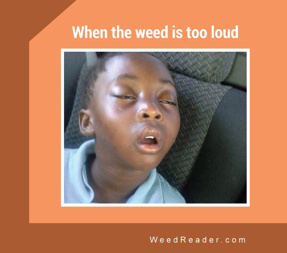 When the weed is too loud