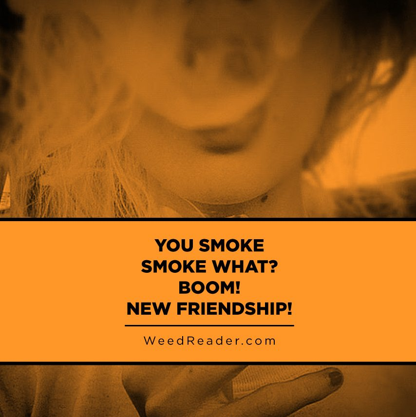 you-smoke-smoke-what-boom-new-friendship