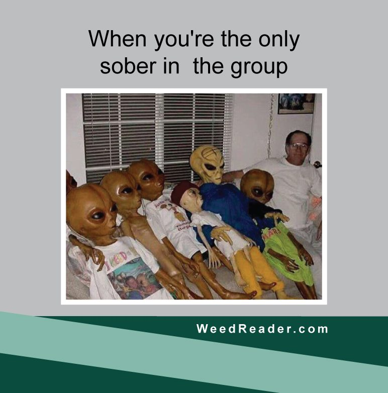 when-youre-the-only-sober-in-the-group