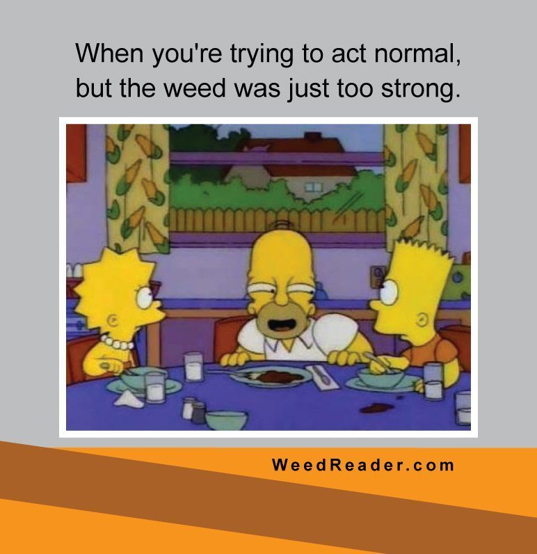 when-youre-trying-to-act-normal-but-the-weed-was-just-too-strong