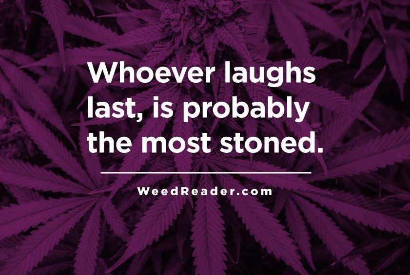 Whoever laughs last is probably the most stoned.