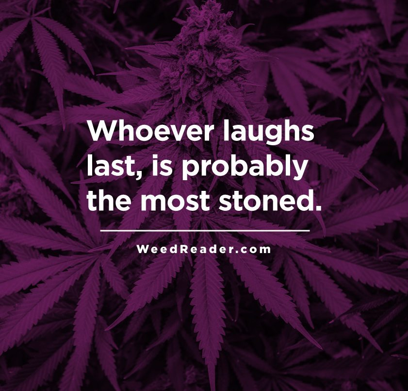 whoever-laughs-last-is-probably-the-most-stoned