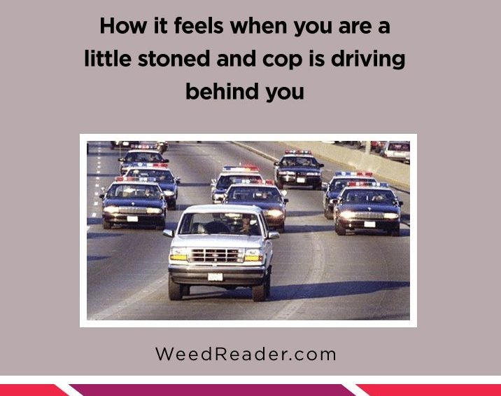 How it feels when you are a little stoned and cop is driving behind you