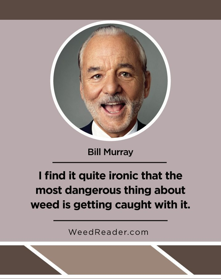 i-find-it-quite-ironic-that-the-most-dangerous-thing-about-weed-is-getting-caught-with-it-bill-murray