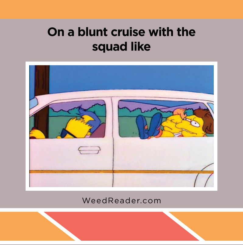 on-a-blunt-cruise-with-the-squad-like