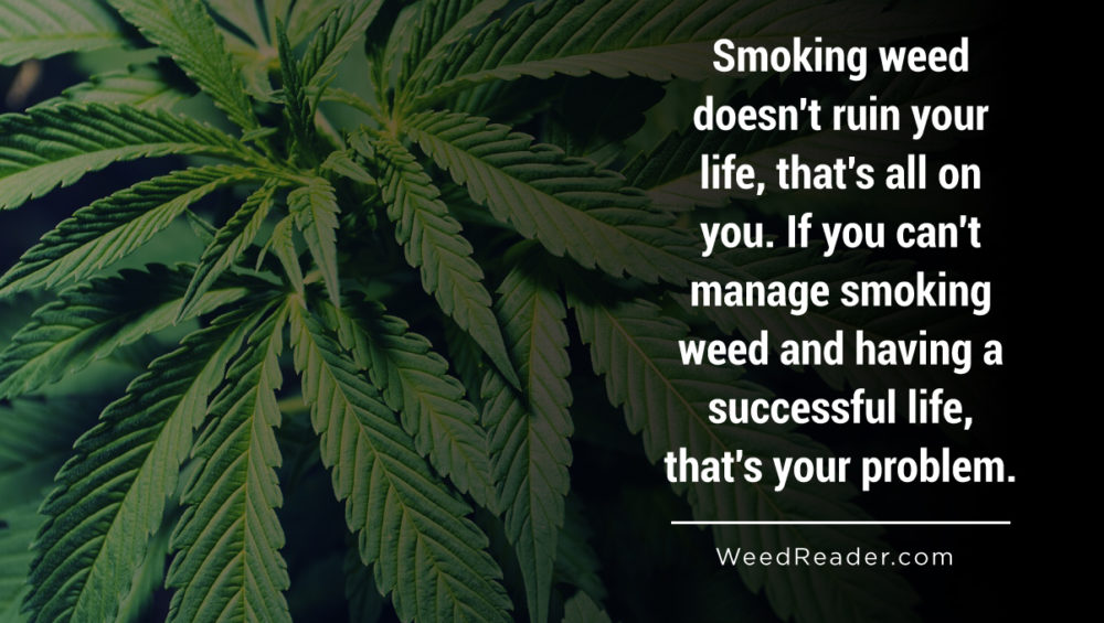 Smoking weed doesnt ruin your life thats all on you. If you cant manage smoking weed and having a successful life thats your problem.
