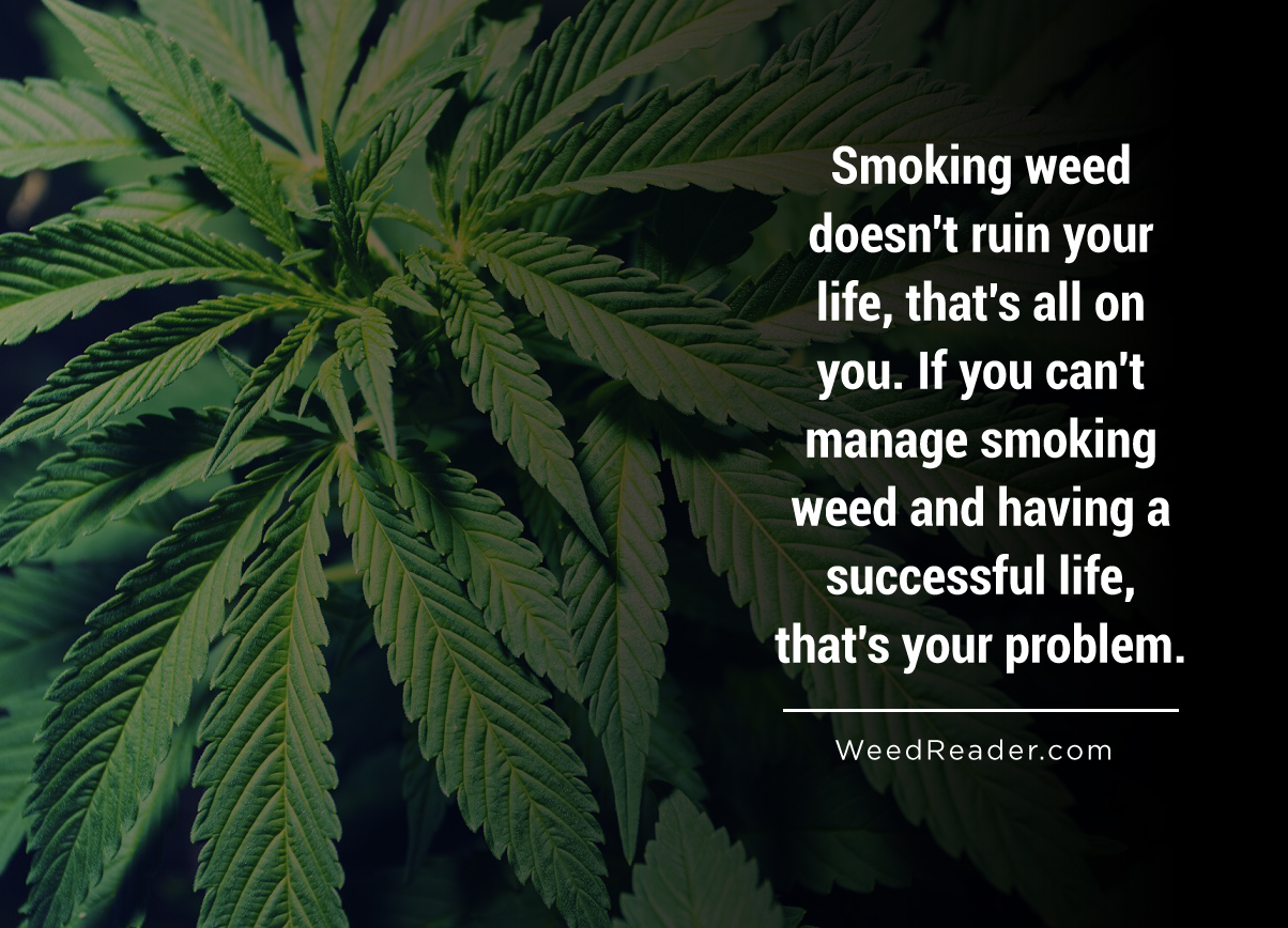 smoking-weed-doesnt-ruin-your-life-thats-all-on-you-if-you-cant-manage-smoking-weed-and-having-a-successful-life-thats-your-problem