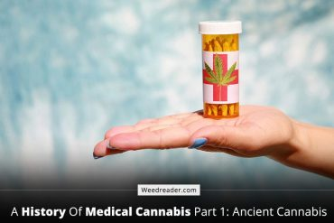 A History of Medical Cannabis Part 1: Ancient Cannabis