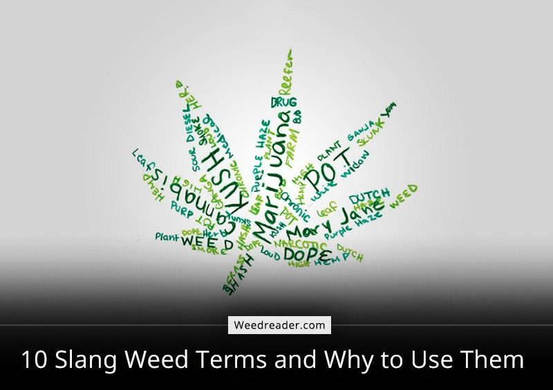 10 Slang Weed Terms and Why to Use Them