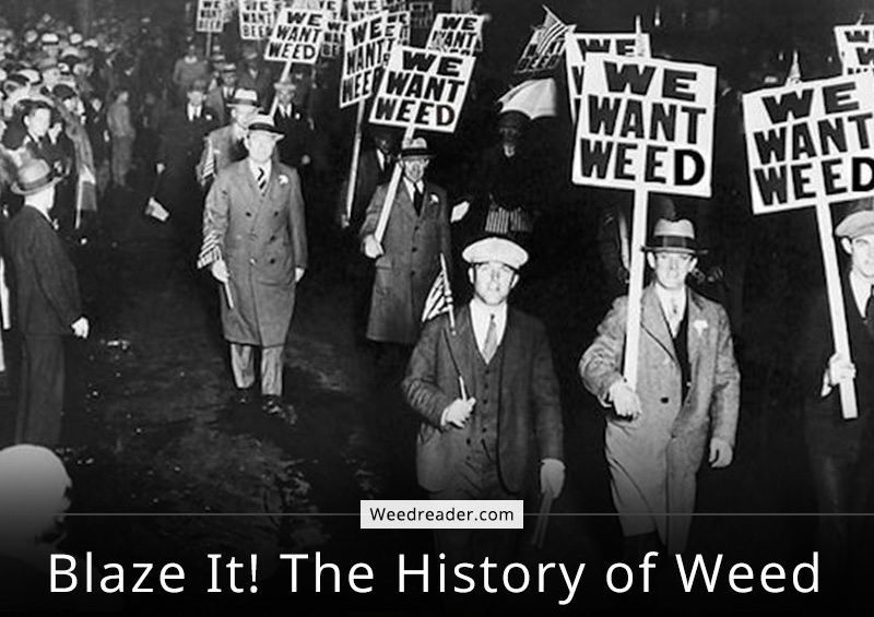 Blaze It The History of Weed