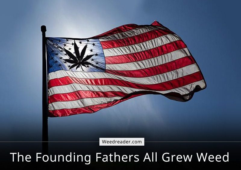The Founding Fathers US All Grew Weed
