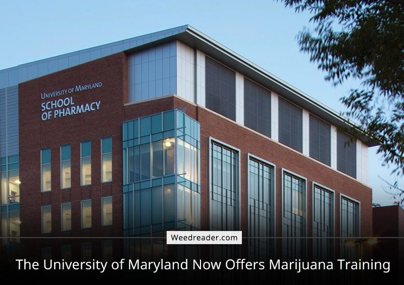The University of Maryland Now Offers Marijuana Training