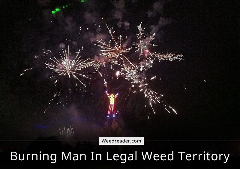 Burning Man In Legal Weed Territory