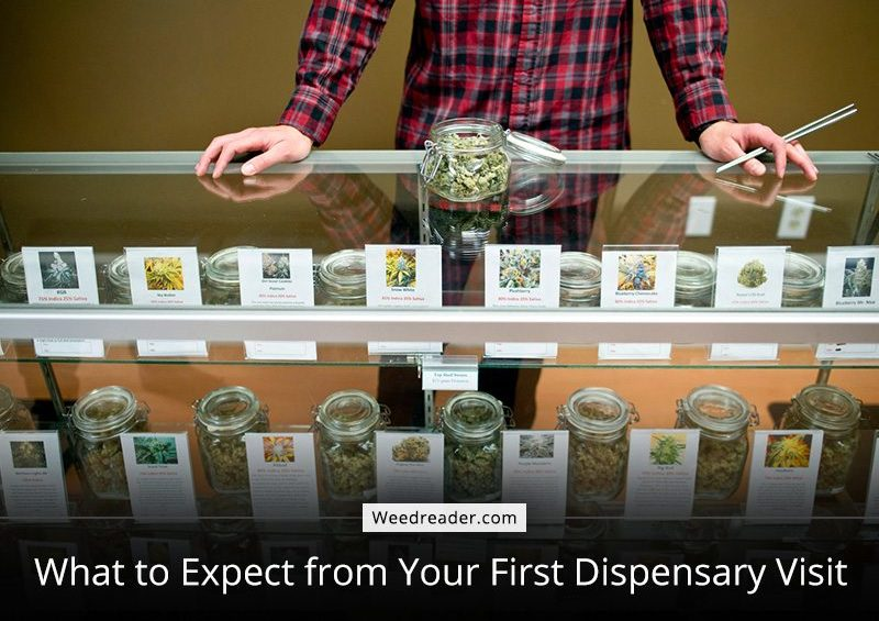 What to Expect from Your First Dispensary Visit