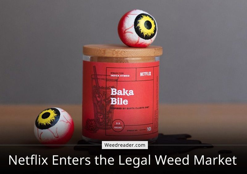Netflix Enters the Legal Weed Market