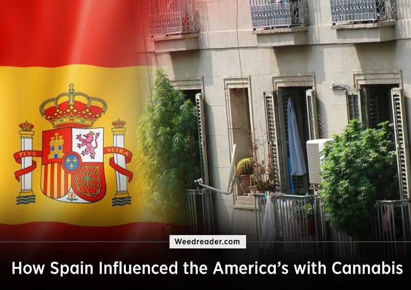 How Spain Influenced the America Cannabis