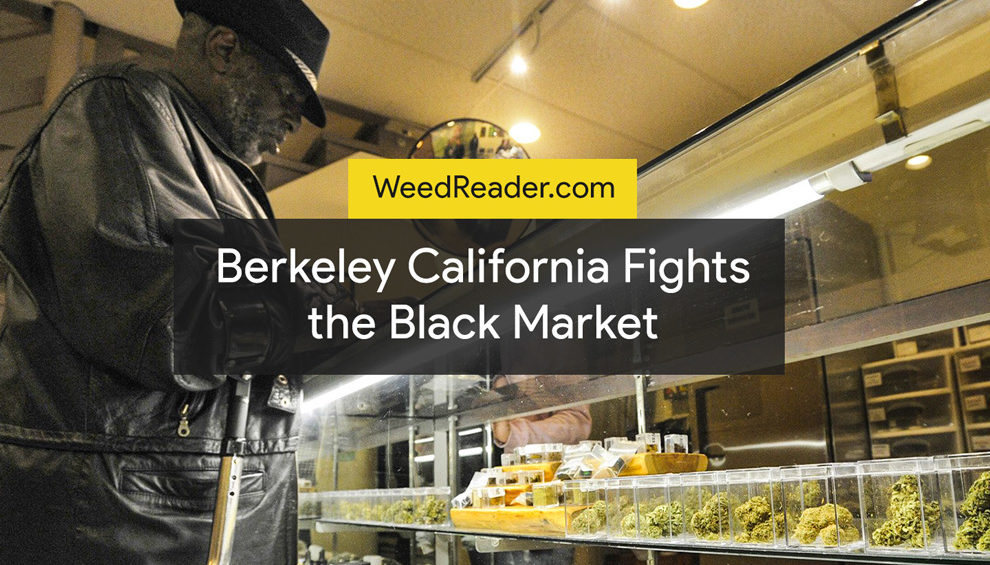 Berkeley California Fights the Black Market