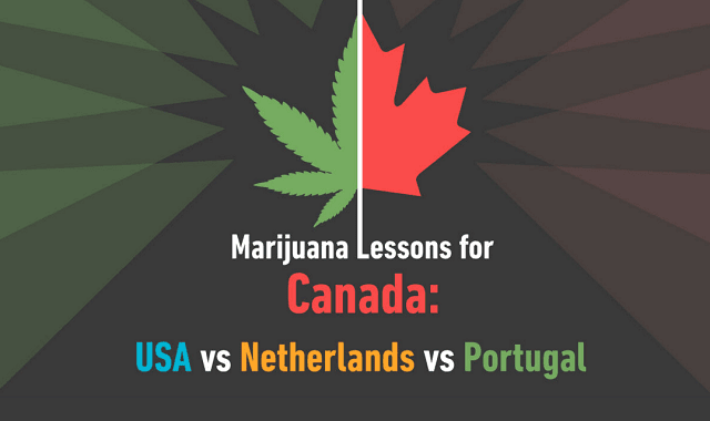 marijuana lessons for canada usa vs portugal vs netherlands