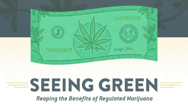 seeing green reaping the benefits of regulated marijuana