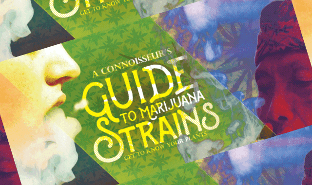 a connoisseurs guide to knowing marijuana strains